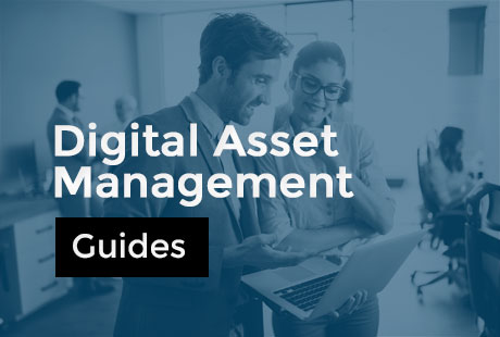 Guides pour comprendre le DAM (Digital Asset Management)